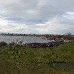La baie de Steveston