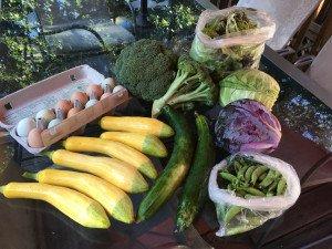 Légumes de la semaine