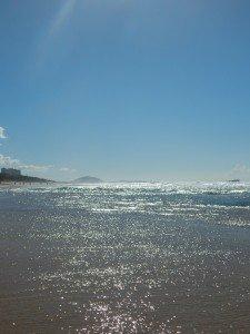 Etape finale de notre périple : La Sunshine Coast dans voyage dscn1761-225x300